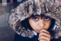 Plz daddy ! (Yannick Charifou Photography ©) Tags: 35mm wide open fixe fixed focal lenght prime dof depthoffield regard enfant yeux pouce thumb sck sucer child eyes looking dady portrait natural light lifestyle childhood papa dad charifou