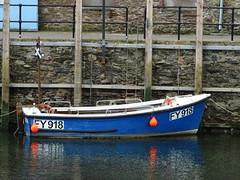 PANIA (guyfogwill) Tags: boats devon guyfogwill cornwall looe fy918 2017 april unitedkingdom gbr guy fogwill