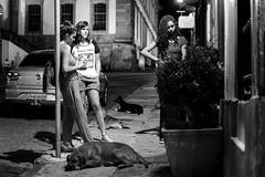 três e três (renanluna) Tags: pessoas people cachorro dog mulher woman monocromia monochromatic pretoebranco blackandwhite pb bw ouropreto minasgerais mg br 55 fuji fujifilm fujifilmxt1 xt1 35mm fujinon35mmf14xfr fujinon renanluna