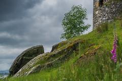 Glimpse of the castle towers (Coisroux) Tags: towers historic kilchurncastle scotland rocks incline tree arcitechture grasses flowers lichen moss scotlanddiscovered d5500 nikond composition darkskies stonework