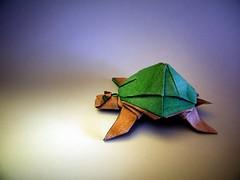 Tortuga - Marc Vigo (Rui.Roda) Tags: origami papiroflexia papierfalten tartaruga turtle tortue tortuga marc vigo