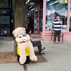 Depanneur des Pins - Summer Sale 2017 on Saint-Laurent (Exile on Ontario St) Tags: tabagie des pins depanneur montreal giant teddy bear ours ourson géant vente trottoir saint laurent saintlaurent stlaurent montréal dépanneur fumeur smoker smoking korean commerce business koreans people commerçants drinking bière beer drunk debauchery drink cigarette cigarettes tobacco tabac sitting relax standing lounge chair summer sidewalk sale milk crate crates tree