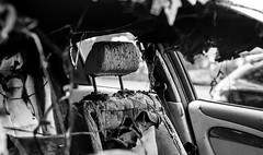 DSCF0780 (::Lens a Lot::) Tags: carl zeiss distagon t 35 mm f 14 80s   8 blades iris contax yashica cy paris 2017 street photography streetphotography light depth field vintage manual fixed length prime lens german germany west bw black white darkness contrast monochrome urban urbex car burned