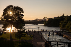 Sunset over the Ottawa River (Aymeric Gouin) Tags: canada ottawa ontario light lumière sunset sun soleil coucherdesoleil silhouette city ville river rivière bridge pont scene water eau canal rideau travel voyage tree arbre outaouais olympus omd em10 aymgo aymericgouin