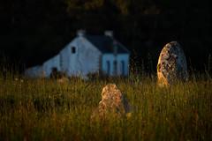 Carnac (Faouic) Tags: france bretagne morbihan carnac ménec alignements menhirs coucherdesoleil mégalithes
