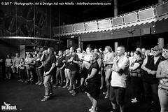 2017 Bosuil-Het publiek bij The Road Home en The Brandos 4-ZW