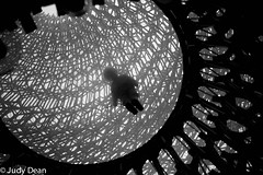 The Hive (judy dean) Tags: judydean 2017 kewgardens thehive installation fascinating ithums