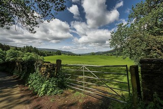 Country Gate....