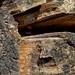 Broken. Souche d'arbre (jjcordier) Tags: broken bois souche arbre cassure macro