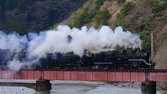 DSC9805 (__nEUROn__) Tags: locomotive shizuoka train railway oiwagarailway jnr c56 c10 蒸気機関車 大井川鉄道 静岡県