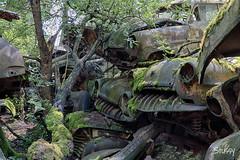 SP-1 (StussyExplores) Tags: austria scrapyard vintage cars teeth rust decay abandoned left behind vehicles explore exploration urebx