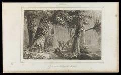 Forêt ouverte le long du Mucuri (BNDigital) Tags: escravos negros