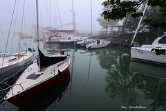 a foggy day at lakeside park (Rex Montalban Photography) Tags: rexmontalbanphotography portdalhousie marina fog sailboats stcatharines