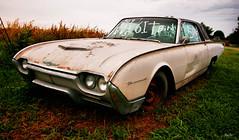 phoenix... (Stu Bo) Tags: hdr topaz tonemapped thunderbird rusty rust vintagecar vintageautomobile ford leftfordead certifiedcarcrazy classiccar