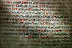 These are names. These were people (Tiigra) Tags: prague czechia cz 2017 museum texture typeface wall