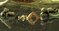 Bathing Bears (ℰżιℓι) Tags: suicidedollz we3rp argrace avaway endlesspaintattoo paperdolls axix merlificpaperdolls sg avatar bento catwa essences maitreya secondlife sl valouadasia