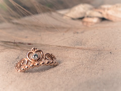 Treasure on the beach (*mirt) Tags: mondayfreetheme 7dwf ring jewel pandora love princess crown tiara rosegold shells sand beach dune beachgrass hemlock smileonsaturday jewels