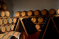 giribaldi_16 (sassiitalytours) Tags: wine piemonte castle rodello langhe altalanga vino winetours