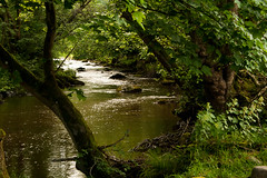 River Ceiriog (Tadeusz Cholewa) Tags: wales riverceirog ceiriogvalley wrexhamcountyborough chirk flikr