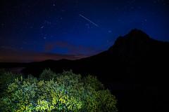 Nocturna de Monfragüe (MigueR) Tags: españa extremadura cáceres monfragüe nocturna estrellas cielo linterna satélite fuji xt1