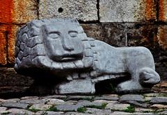2010-08-05bv Little Square Lion ([Ananabanana]) Tags: nikon d40 gimp photoscape tamron 70300mm 70300 tamron70300mm tamron70300mmaff4556dildmacro tamronaff4556dildmacro tamronaf70300mmf456dildmacro 70300mmf456dildm nikonistas nikonista lviv lvov lemberg lemburg ukraine ukrainian historic history lion lions leopolis
