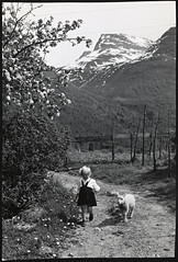 G-240-3. Sommermotiv : liten jente med lam (National Library of Norway) Tags: nasjonalbiblioteket nationallibraryofnorway postkort postcards barn children sauer sheep lam lambs lamb jenter girls sommer summer landskapsfotografi normannskunstforlag