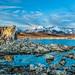 Lake, rock, and mountain