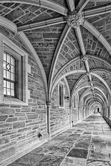 Princeton University Hallway BW (Susan Candelario) Tags: collegiategothic holderhall johndrockefeller3rdcollege matheycollege nj northamerica old rockefellercollege susancandelario us unitedstates arch arches architectural architecturaldetail architecture campus cloister columns dormitory historic historical iconic ionic ivyleague landmark landmarks landscape landscaping residentialbuilding rocky schools suburban university urban