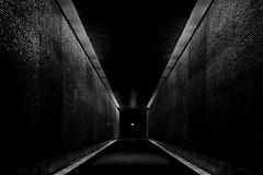 ...secret.apointofview ... (*ines_maria) Tags: mémorialdelashoah paris memorial light dark shadow man people urban urbanart city blackandwhite noiretblanc panasonic dmcgx8 monochrome mono wall einfarbig france bw