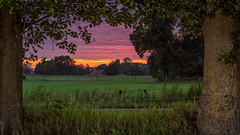 Penumbra (Michael Angelo 77) Tags: evening trees frame pink orange lanscape clouds