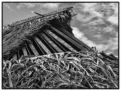 Vaisei, Futuna, 2017 (Christian Neumüller) Tags: océanpacifique pacificocean noiretblanc blackandwhite nb bw artisanat tradition patrimoine architecture construction écologique olympus em1