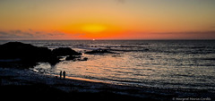 sunset along the coastline (Margret Maria Cordts) Tags: pacificgrove california unitedstates us