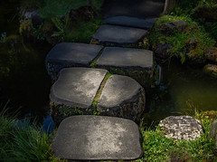 Step This Way (gwshamb) Tags: path natural landscape japanesegardens steppingstones sanfrancisco walkingpath steps walk light