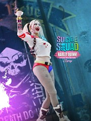 harley quinn_003 (siuping1018) Tags: hottoys dc photography actionfigures toy suicidesquad harleyquinn siuping canon 5dmarkii 50mm