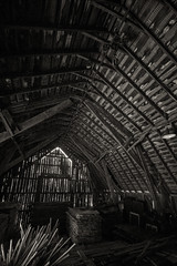 Lumber storage (citrusjig) Tags: pentax k3 sigma1020mmf456 barn manualfocus wisconsin blackandwhite toned