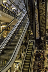 59/100: Going up (judi may...mostly off for a while) Tags: 100xthe2017edition 100x2017 image59100 australia queenvictoriabuilding sydney shoppingmall escalator reflections windows shopwindows windowwednesday people building architecture canon7d patterns lines shapes geometricshapes