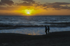Paseo al Atardecer. Ride at Sunset. (Capuchinox) Tags: paseo ocaso atardecer sol nubes cielo mar playa ride sunset sun clouds sky sea beach matalascañas huelva andalucia españa spain
