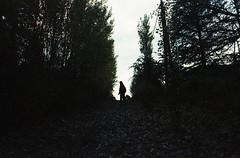 mañana (☾arimelo) Tags: filmisnotdead 35mmfilm analogue pelicula forest bosque sierras mountains cordobaargentina minoltasrt101 colorimplosion adox grain silueta morning autumn