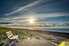 DSC_4588 (Evo800) Tags: walks cooper sky grass cloulds sunset water forth scotland nikon d610 deer skylark