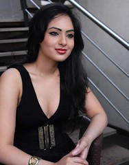 Indian Actress NIKESHA PATEL Hot Sexy Images Set-1 (25)