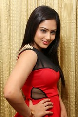 Indian Actress Nikesha Patel Hot Sexy Images Set-2 (25)