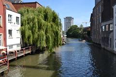 Gante (Bélgica) (littlecastle96) Tags: gante bélgica geografíahumana edificio monumento turismo waterway canal río river belgium tree árbol