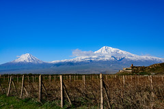 _ARM3169-1.jpg (DocSark) Tags: khorvirap araratmarz ararart landscape armenia places