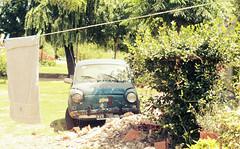 WVN 766 (Lady Smirnoff) Tags: carro auto abandoned abandonado outdoor exterior dia day