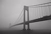 Verrazano fade out (lucymagoo_images) Tags: sony rx100 staten island brooklyn verrazanonarrows bridge suspension river rain rainy fog foggy vanishing newyorkharbor grainy bw