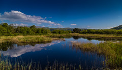 View from the Hide (JDS-photo) Tags: landscape lake pond spring reflection dyfi sky dyfiospreyproject northwales landscapephotography nature wildlife water lightroom canoneos6d canonef1740mmf4lusm