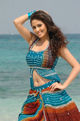 Indian Actress SADA Photos Set-6-Indian Actress SADA Article-Interview-English-Kannada (3)