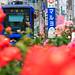 IMG_4463-9.jpg