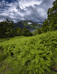 The Venue (J McSporran) Tags: scotland trossachs benvenue benaan landscape canon6d ef1635mmf4lisusm