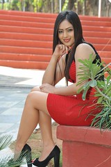 Indian Actress Nikesha Patel Hot Sexy Images Set-2 (38)